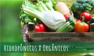 Alimentos orgânicos e hidropônicos